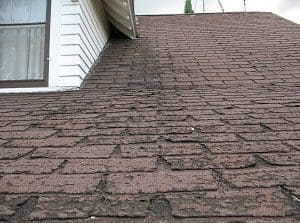 replace roof shingles edmonton